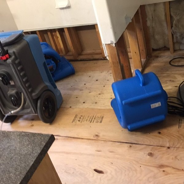 Water Damage Cleanup Portland OR