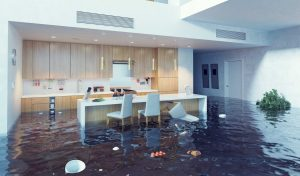 Water Damage Restoration Dallas OR